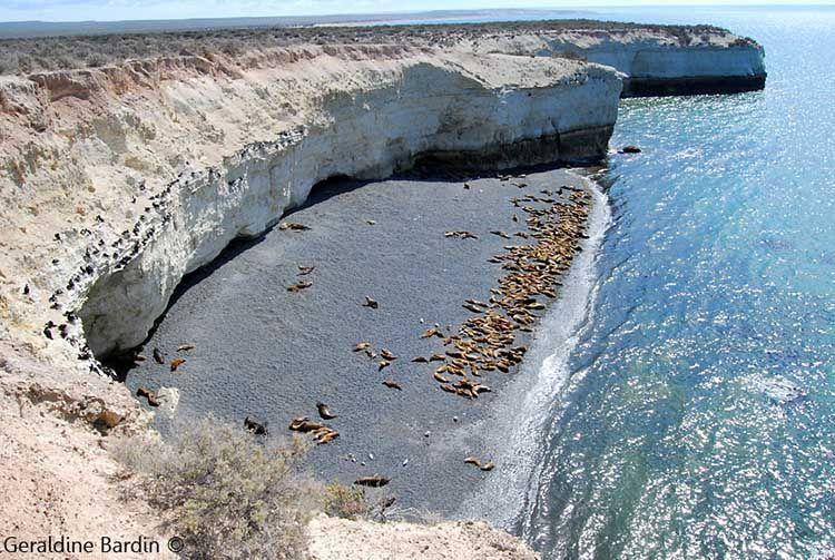 Punta Loma en Puerto Madryn