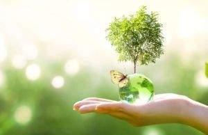5 pasos sencillos para conseguir ser más sostenible