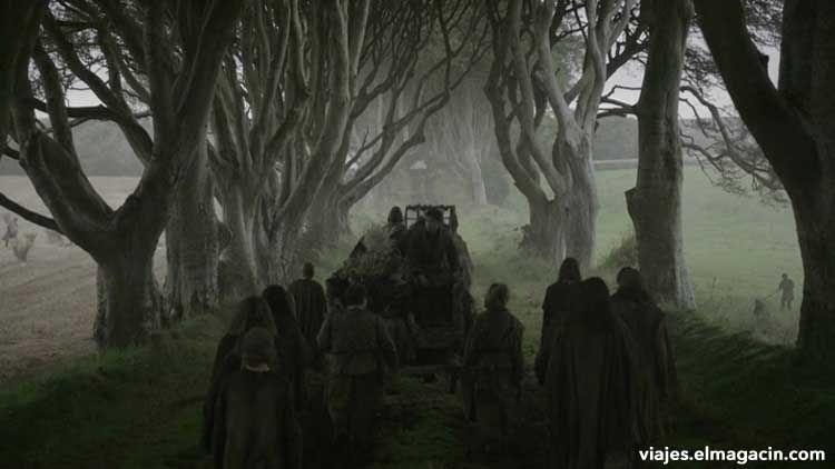 Dark Hedges of Armoy Juego de Tronos