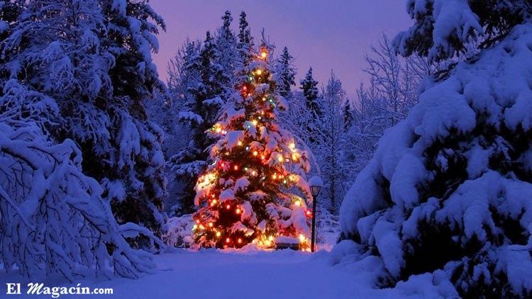 Árbol de Navidadbonito. El Magacín.