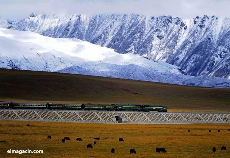 Shangri-La Express. El tren de lujo en China. El Magacín.