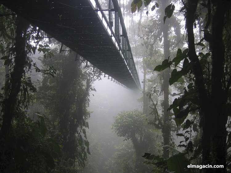 Monteverde y el Parque Nacional Braulio Carrillo. El Magacín.