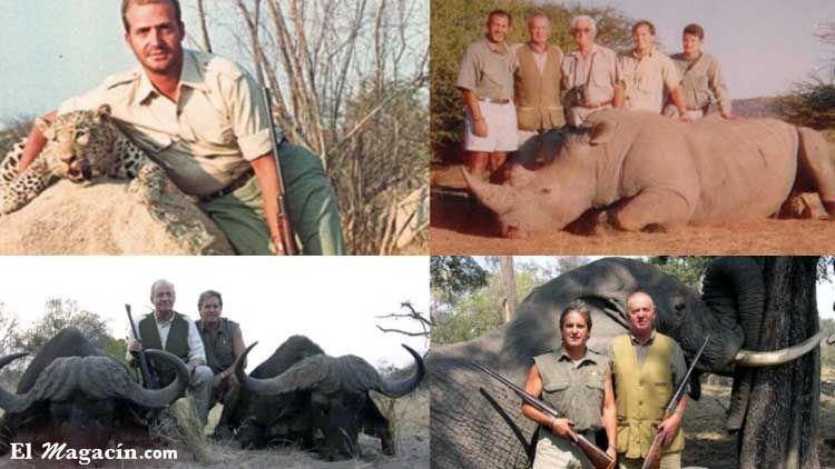 Trofeos de caza de el Rey Juan Carlos I