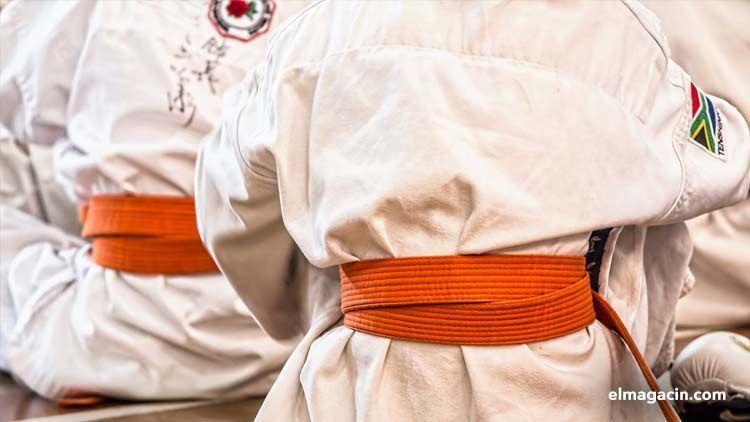 Artes marciales. El Magacín.