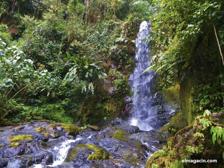Costa Rica es un destino ecológico. El Magacín.