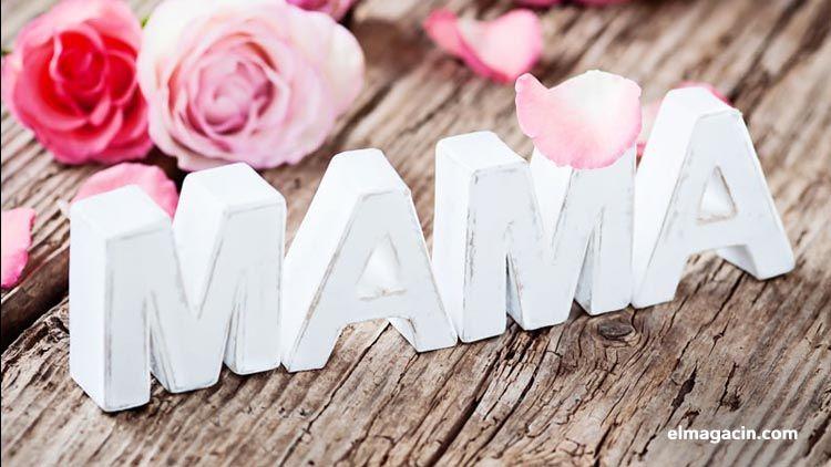 Día de la Madre. El Magacín.