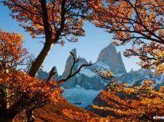 Relato de otoño.