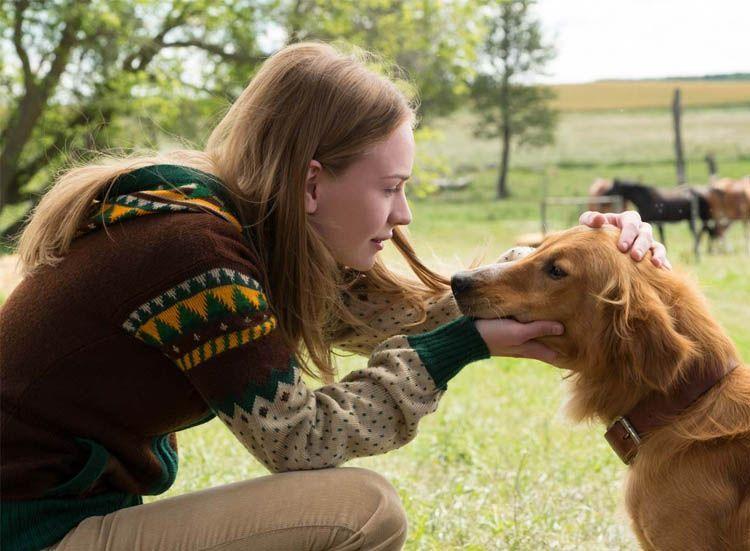 Britt Robertson en una escena con un perrol. El Magacín.
