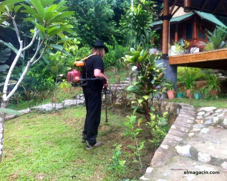Desbrozando los jardines de Bamboo Village en Kuala Lumpur Malasia. El Magacín.